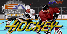 NHL Hockey 91