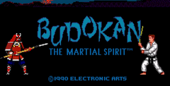 Budokan-The Martial Spirit