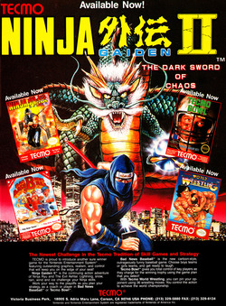 Ninja Gaiden 2: The Dark Sword of Chaos Poster
