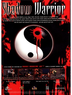 Shadow Warrior Poster