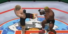 Ultimate Fighting Championship Dreamcast Screenshot