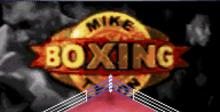 Mike Tyson's Boxing
