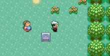 Pokemon Emerald GBA Screenshot