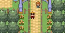 Pokemon Glazed GBA Screenshot