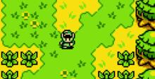 The Legend of Zelda: Oracle of Ages GBC Screenshot