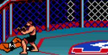 Ultimate Fighting Championship GBC Screenshot