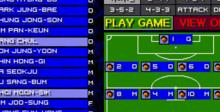 Sensible Soccer - International Edition