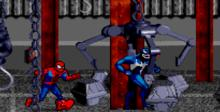 Spider-Man and Venom in Separation Anxiety Genesis Screenshot