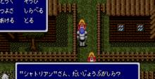 Sword of Vermilion Genesis Screenshot