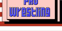 Pro Wrestling NES Screenshot