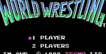 Tecmo World Wrestling NES Screenshot