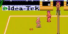 Venice Beach Volleyball NES Screenshot