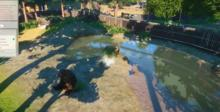 Planet Zoo PC Screenshot