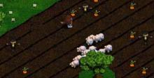 Sheep Playstation Screenshot