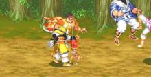 Warriors Of Fate Playstation Screenshot