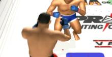 Pride FC: Fighting Championships Playstation 2 Screenshot