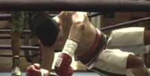 Fight Night: Round 3 Playstation 3 Screenshot