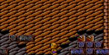 Toto World 3 Sega Master System Screenshot