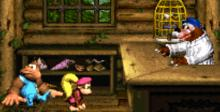 Donkey Kong Country 3: Dixie Kong's Double Trouble! SNES Screenshot