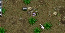 SimAnt: The Electronic Ant Colony SNES Screenshot