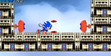 Sonic Wild Fire Wii Screenshot