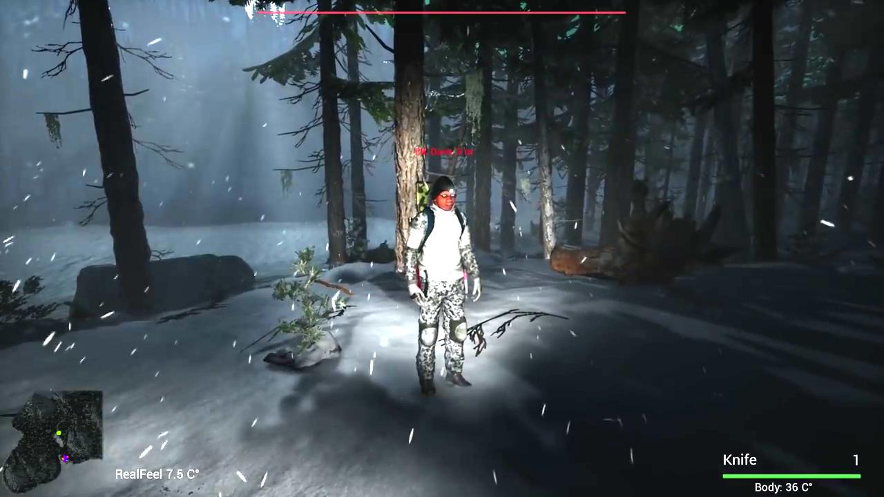 Finding Bigfoot Download Game | GameFabrique